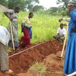 L'intervento per la sicurezza alimentare…