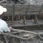 Gabbia per l'allevamento di granchi nel mangrovieto.