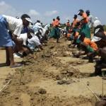 Prima giornata per la riforestazione con le scuole di Kilifi.