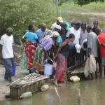 Dimostrazione dell'impiego delle vasche per i granchi.